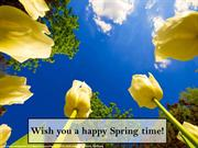 Wish you a happy Spring time!