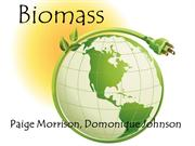 Biomass Power point
