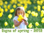 Signs of Spring  around the World - 2012
