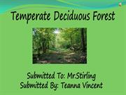 Deciduous Forest Assignment