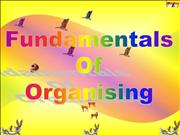 FUNDAMENTALS OF ORGANISING