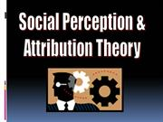 Social Perception & Attribution Theory