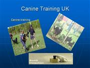 Canine Training UK