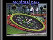 Montreal_park