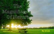 99413 The Magnificence Of Nature (Wide Screen) par Sirrods