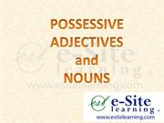 Possessive Adjectives and Nouns -Basic