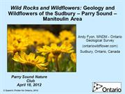 Wild rocks and wildflowers by OGS Andy Fyon