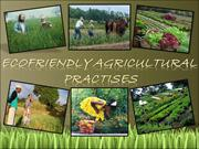 Ecofriendly Agriculturel Practises