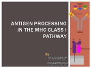 antigen processing in the MHC class I pathway