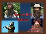 honey bee dance
