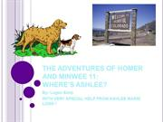 THE ADVENTURES OF HOMER AND MINWEE 10