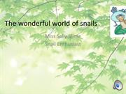 The wonderful world of snails