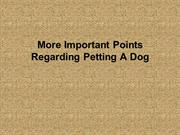 More Important Points Regarding Petting A Dog