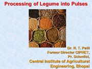 Processing legume into pulses