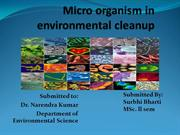 Micro organism in environmental cleanup