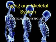 Aging and Skeletal System - Copy