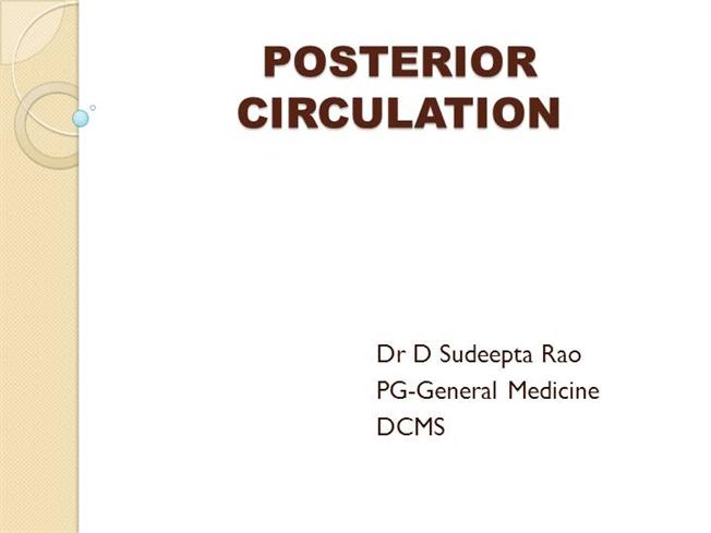 Posterior Circulation Gross Anatomy Authorstream