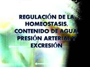 REGULACIN DE LA HOMEOSTASIS, CONTENIDO DE AGUA