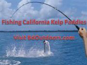 Fishing Kelp Paddies
