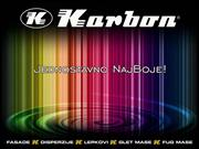 Karbon BPS CORPORATE 2012
