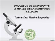 PROCESOS DE TRANSPORTE A TRAVES DE LAS MEMBRANAS UG