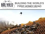 Presenting Balyolu: The Honey Road, MAY 2012