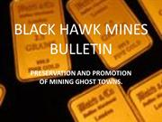 Terms and Conditions - Black Hawk Mines Bulletin