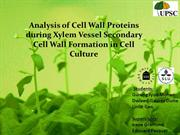 Analysis of cell wall proteins