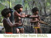 Tribe from Brazil