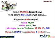Peluang Bisnis Naturally Plus: Rahasia Income Rp.100 Jt/Bln