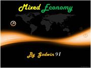 Mixed Economy