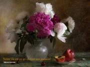 still_life_and_quotations