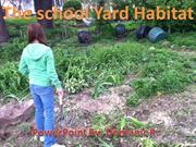 The Schoolyard Habitat