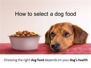 How to select a dog food
