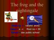 The frog and the nightingale12