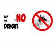 Dengue Video