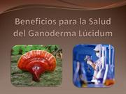 Ganoderma Beneficios