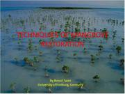 Restoration of Mangrove forests by Amod