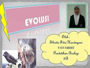 EVOLUSI SHINTA