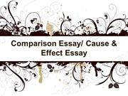 Comparison Essay Powerpoint (MS Standard 3d)