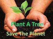 Plant a tree,save the planet