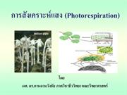 Lecture_07_Photosynthesis