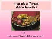 Lecture_06_Cellular_Respiration