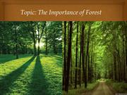 The Importance of Forest