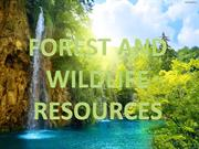 FOREST AND WILD LIFE RESOURCES BY DIPESH