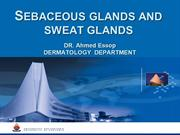 Sebaceous and Sweat Glands