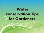 Water Conservation Tips for Gardeners