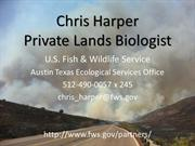Herpetology by Chris Harper, pp show