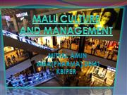 MALL CULTURE PPT