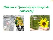 O biodiesel - Os recolhedores